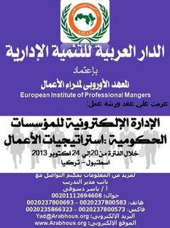 الإدارة الإلكترونية للمؤسسات الحكومية : استراتيجيات الأعمال اسطن