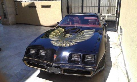 بونتياك ترانس ام فاير بيرد 1979 Pontiac Firebird Trans Am - See