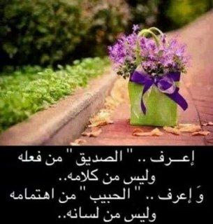 ابحث عن انسانه عاديه جملها مقبول