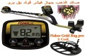 Fisher Gold Bug pro Detector