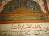 مخطوطه موسوعة حياة الحيوان الكبرى  اكتر من 700 سنة